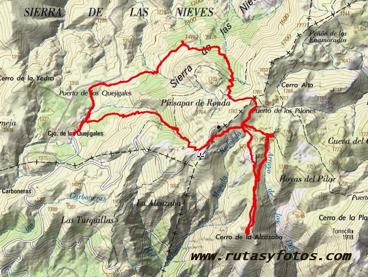 Pinsapar de la Cañada del Cuerno - Cerro de la Alcazaba - Pinsapar de la Cañada de las Animas