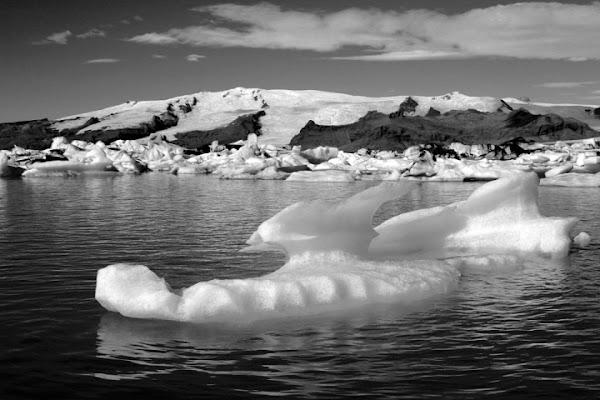 Iceberg di ALE812311