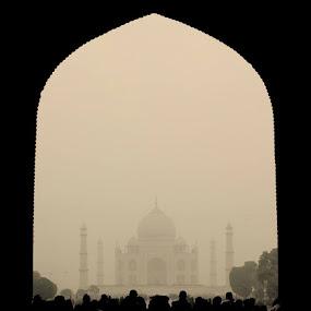 The Taj Mahal on a foggy winter morning by Shreyas Kumar - Buildings & Architecture Statues & Monuments ( winter morning, taj silhoutte, tajmahal, taj mahal, foggy silhoutte,  )