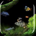 Aquarium 2015 Live Wallpaper