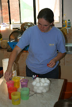 Photo: We sprung for white eggs, so we could color them better. They cost $4.28/30 as opposed to the usual $3.14/30.