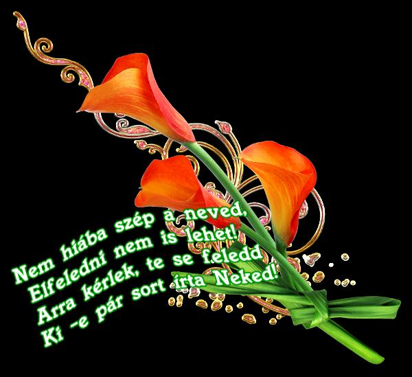 emlékkönyvbe való versek idézetek Marika oldala   ** Idézetek Versek / Emlékkönyvbe ***