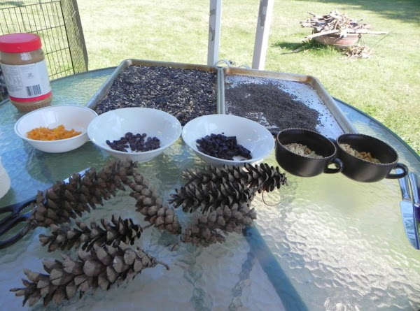 Gather your pinecones first. (We found ours at are parents camp where there is...