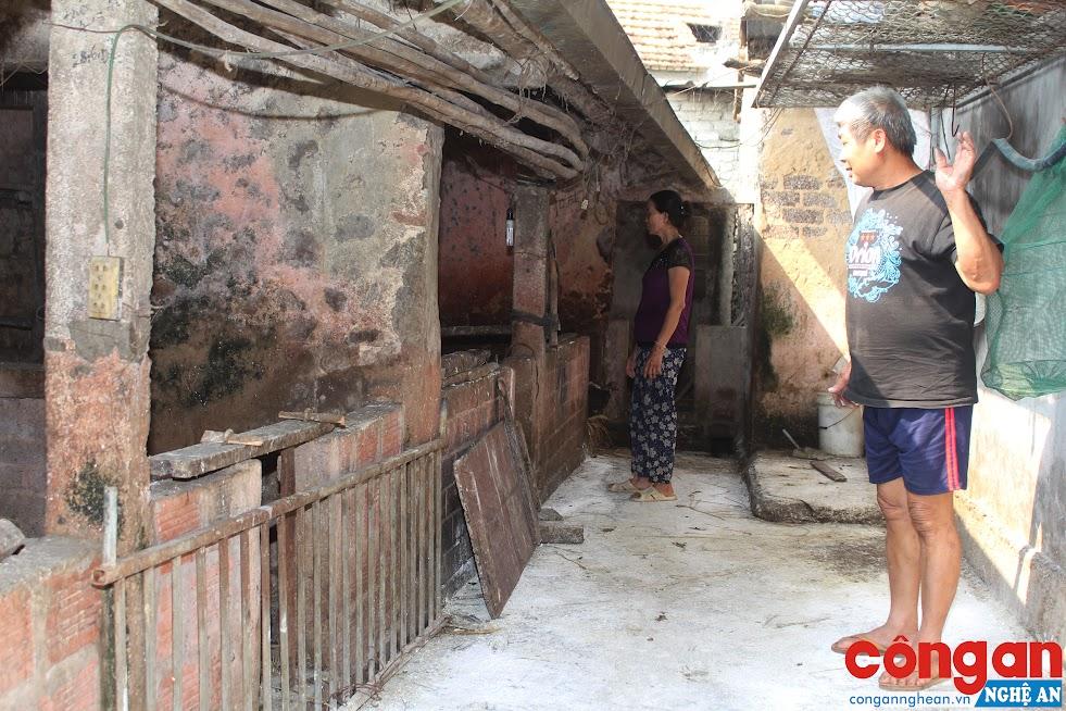 Hộ gia đình ông Nguyễn Thành Vinh có lợn bị nhiễm dịch