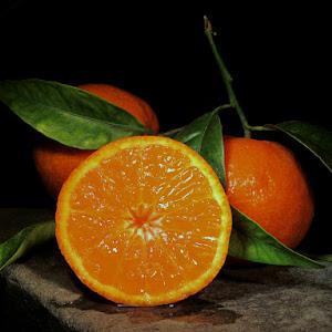 Oranges-Clems01.jpg
