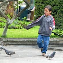 Photo: Chasing pigeons, a favorite kid sport