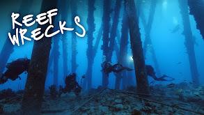 Reef Wrecks thumbnail