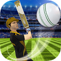 Cricket Multiplayer icon