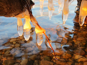 Photo: Icicles dripping over a lake in the sunset at Eastwood Park in Dayton, Ohio.