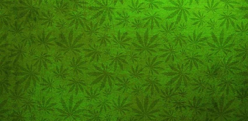 Фон из марихуаны конопля в роли табака