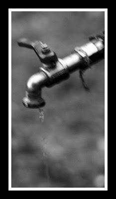 L'acqua di assoferdy