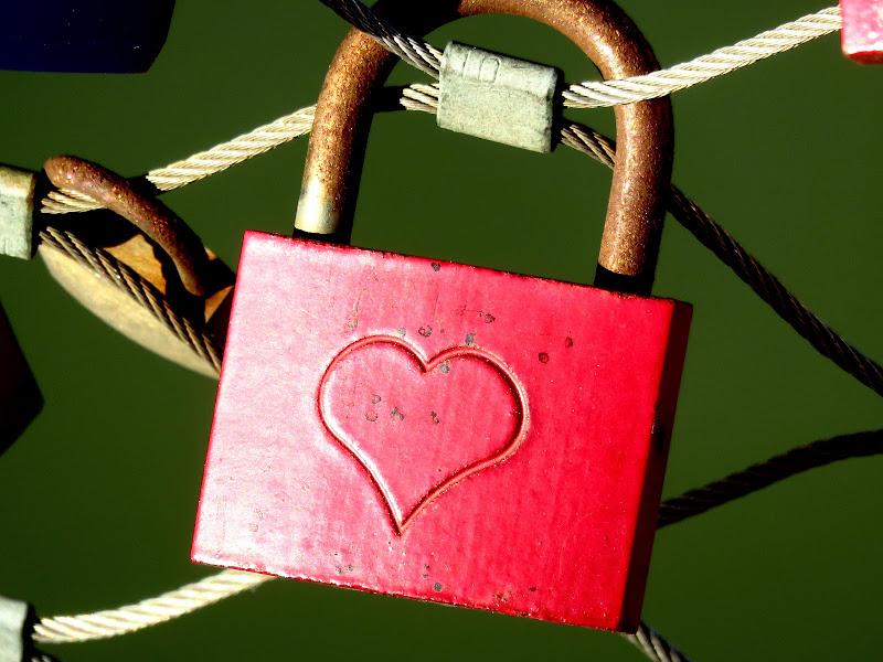 l'amore...vincolo o evasione? di mariellaturlon