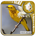 Gorgeous Bird Ideas icon