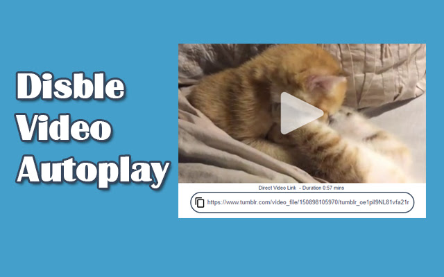 Tumblr Disable Video Autoplay