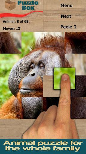 Animals 2: puzzle box