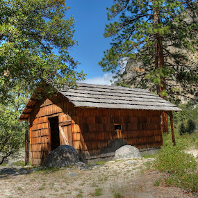 Cabin in Sequoia National Park by Eleazar Valdez - Buildings & Architecture Other Exteriors ( national park, mountain, woods, cabin, sunny, park,  )