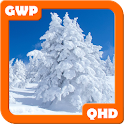 Snow Wallpapers QHD icon