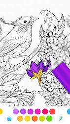 InColor - Coloring Books 2018 APK screenshot thumbnail 5