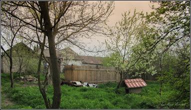 Photo: Turda - Str. Salinelor, Nr.15 - casa rurala - fosta casa  familiei Goia , gradina (parasita), vedere vecin stanga cu acces de pe Str. Avram Iancu - 2018.04.15