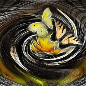 Yellow flight by Carmen Velcic - Illustration Abstract & Patterns ( abstract, fantasy, butterfly, yellow, digital, curves )