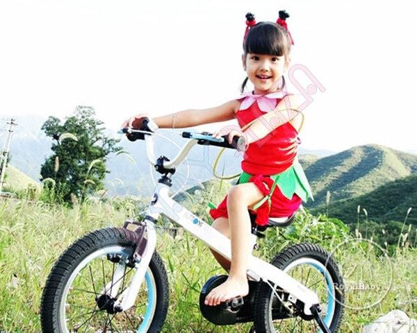 Xe đạp trẻ em ROYAL BABY RB-16 1