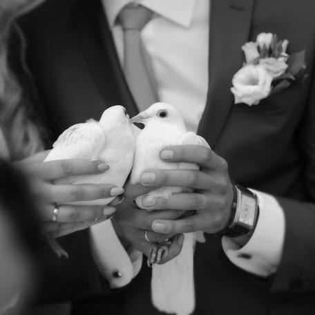 Wedding photographer Viktor Prikhozhaev (Normandyyy). Photo of 07.07.2016