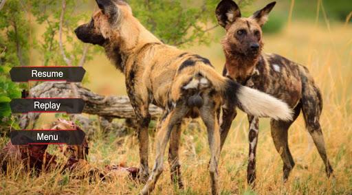 サバイバル野生の犬シミュレーター