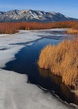 Photo: Upper Truckee River marsh at Lake Tahoe