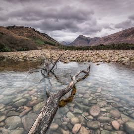 Glen Etive by Ian Pinn - Landscapes Mountains & Hills ( mountains, rocks, glen etive, tree, winter, river, clouds, scotland )