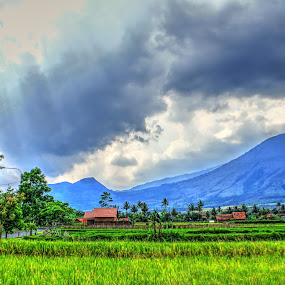 Guntur Montain by Hasby Photography - Landscapes Mountains & Hills ( mountains, mountain, indonesia, sundanese, landscape photography, landscape )