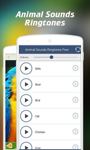 Animal Sounds for Kids 2.62.6 screenshots 3