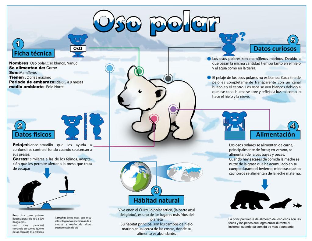 somdocents-ossos-polars-infografia