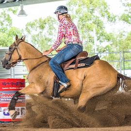 Riding the Dirt Wave by Sarah Sullivan - Sports & Fitness Other Sports ( #barrel racing, #dalby, #sarahsullivanphotography, #qbra )
