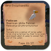 Exotic Birds Mods