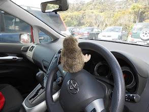 Photo: Por si teníais duda de quién conducía: ¡el Kiwi!