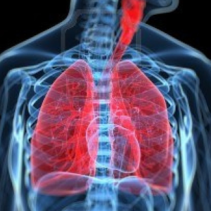 respiratory system android apps on google play
