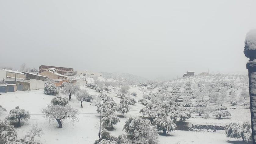 Tahal, bajo la intensa nevada de las últimas horas.