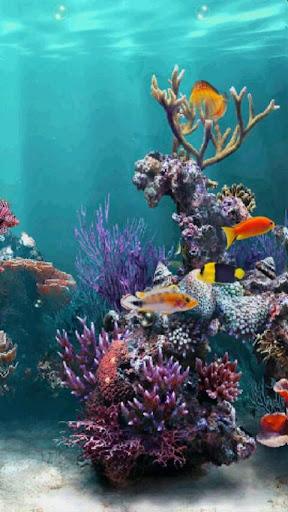 Undersea Aquarium Free LWP