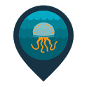 Infomedusa icon