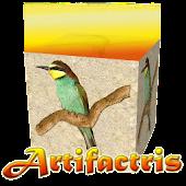 Artifactris