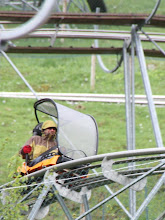 Photo: Day 40 - Rog on the Toboggan Run #2