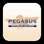 Pegasus Financial