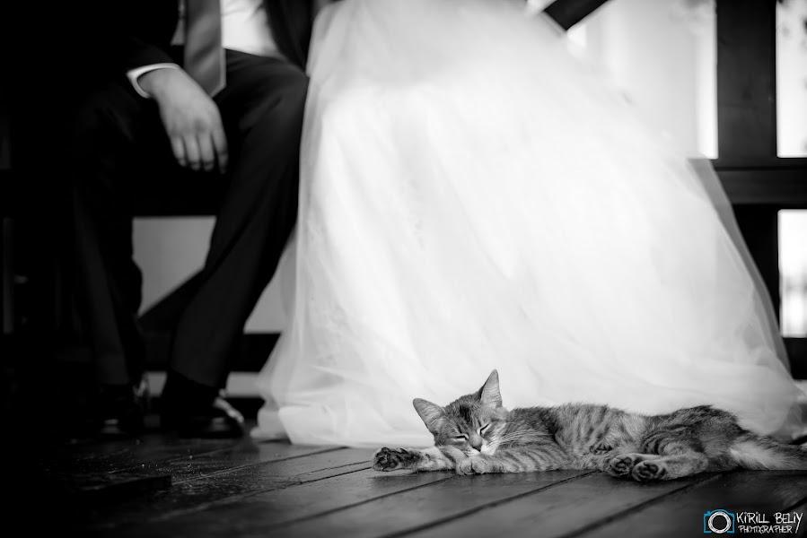 Wedding photographer Kirill Belyy (tiger1010). Photo of 24.09.2018