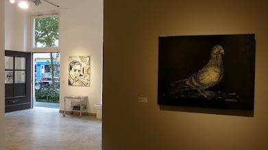 Photo: CityLeaks 2015; Ausstellung Galerie 30Works; MISSTER P & DZIA, Pigeon by night