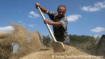 Зерновий бізнес в Україні доволі прибутковий. Однак ДПЗКУ це не стосується