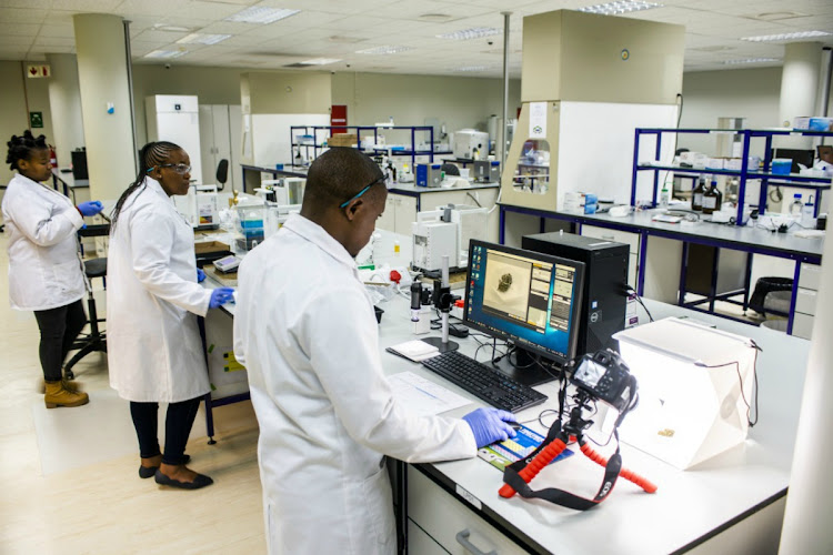 A technician analyses a sample of cannabis inside the LuCan laboratory facility in Maseru, Lesotho. Picture: BLOOMBERG/WALDO SWIEGERS