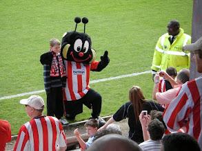 Photo: .... de clubmascotte van 'The Bees' .....
