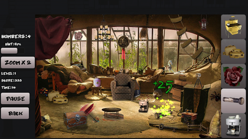 Treasure Hunter Hidden Objects