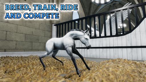 Horse Academy 3.47 screenshots 6