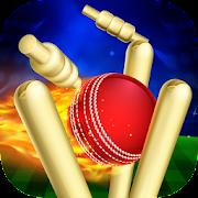 RunOut Master - 3D Cricket
